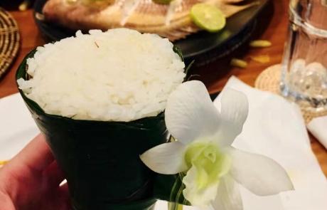 180 Samui Thai Cooking Class